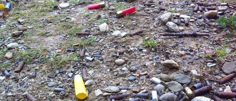 Sparks Pit shell casings